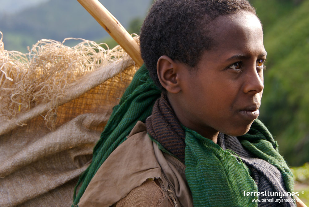 Viajes Etiopía, Pastor Simien Mountains