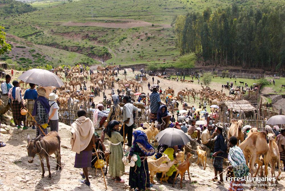 Viajes Etiopía, Mercado Bati